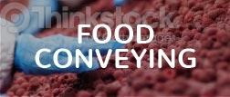 Food conveying tag
